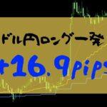 【FXトレード】ドル円ロングで+16.9PIPSの利益【2019年07月29日】