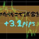 【FXトレード】諦めて危うく試合終了するところだった+3.1pips【2019年8月8日】